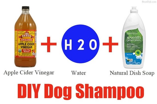 DIY Dog Shampoo Recipes 5
