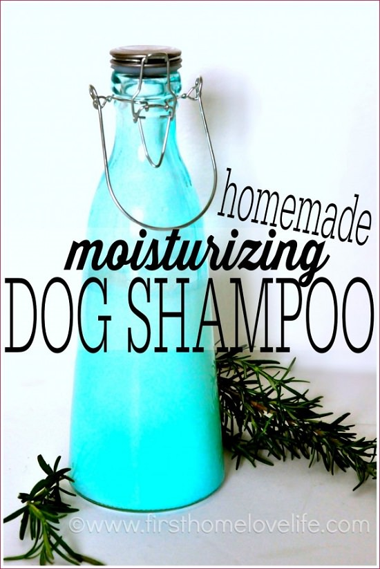 DIY Dog Shampoo Recipes 2