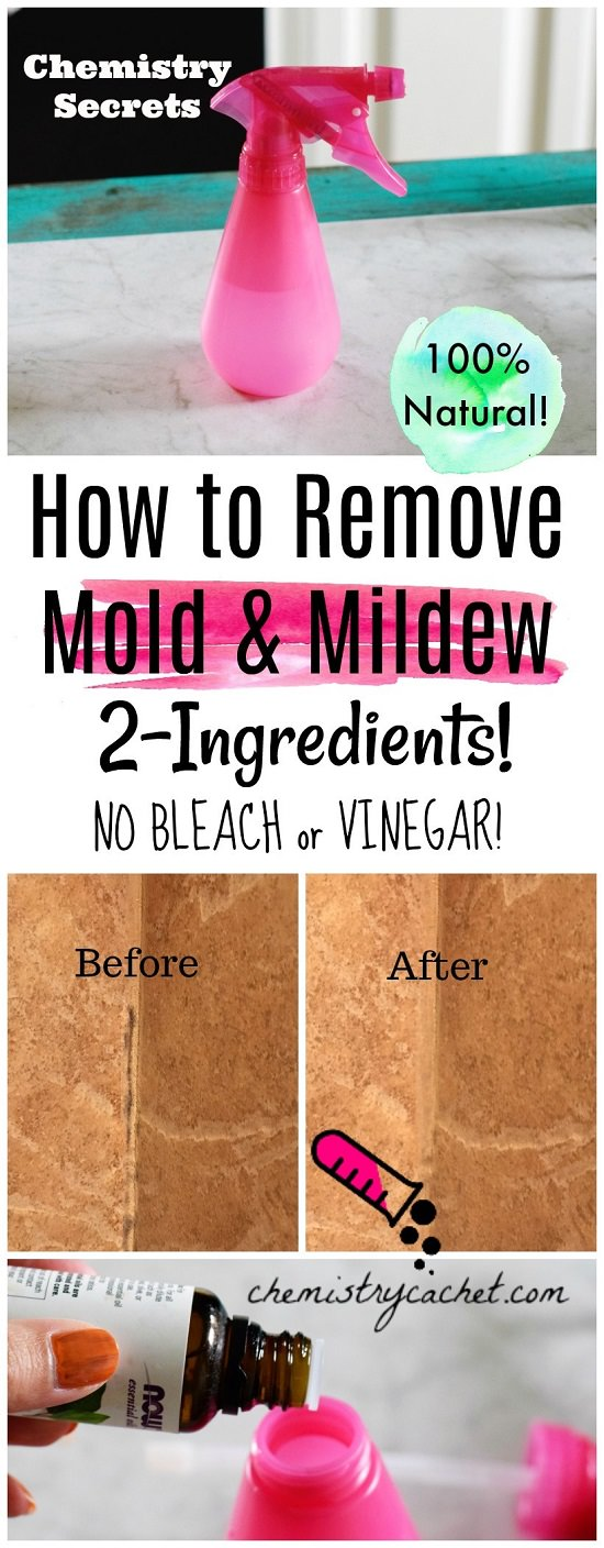 homemade mold remover 14