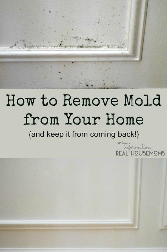 homemade mold remover 13