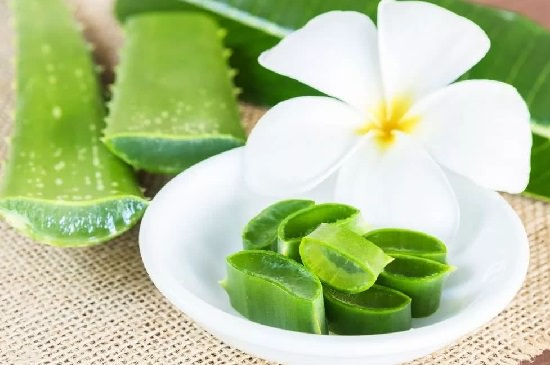 How To Use Aloe Vera For Skin During Pregnancy1