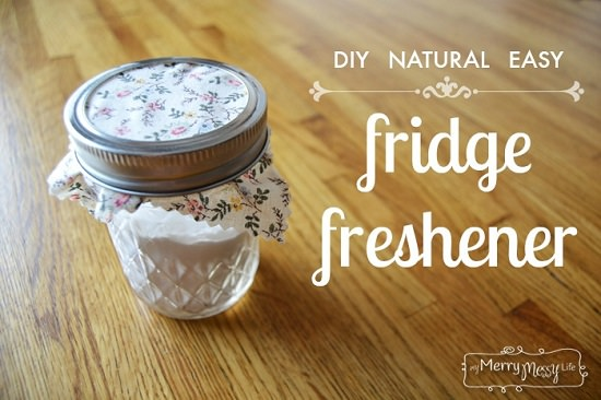 DIY Fridge Freshener 3