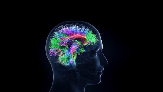 Improves Brain Activity