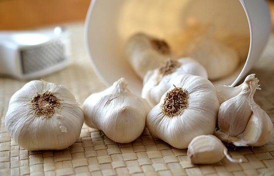 Garlic Salve For Pneumonia2