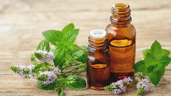 Essential Oils for A Tummy Ache2