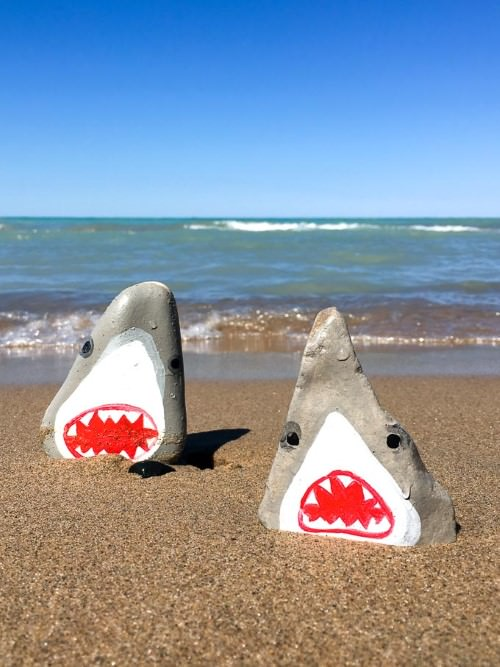 Painted Rock Sharks
