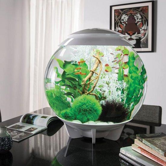 DIY Aquatic Table Centerpiece Ideas1