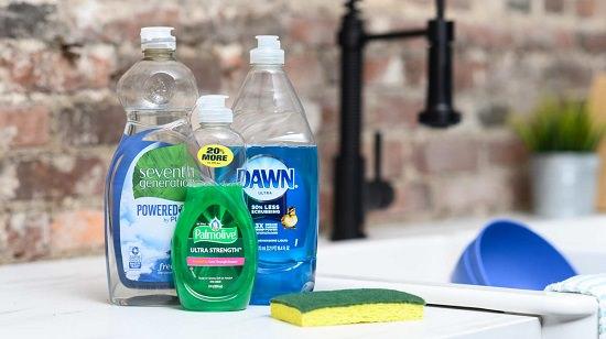 Dawn Dish Soap for Fleas in Carpet2