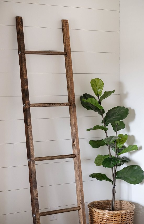 Holiday Style Blanket Ladder